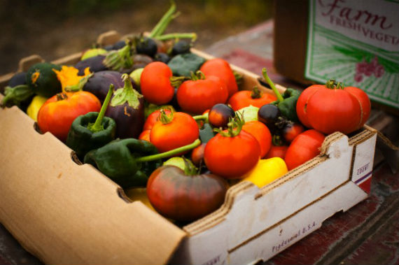 Dieta senza nichel: cosa c'è da sapere